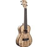 Amati Inst  Amahi UK770C Class Concert Spalted Maple Ukulele - Satin